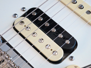 Fender Am Std Stratocaster HSS Shawbucker – The Shawbucker